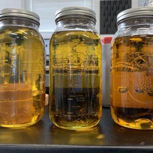Order Distillate online